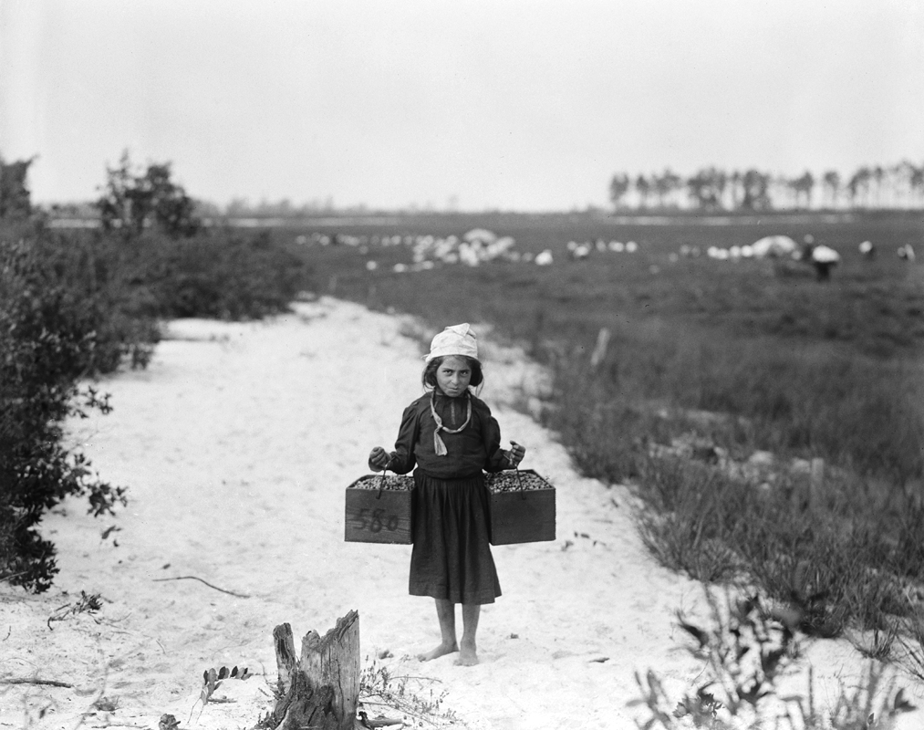 1910, Child Labor