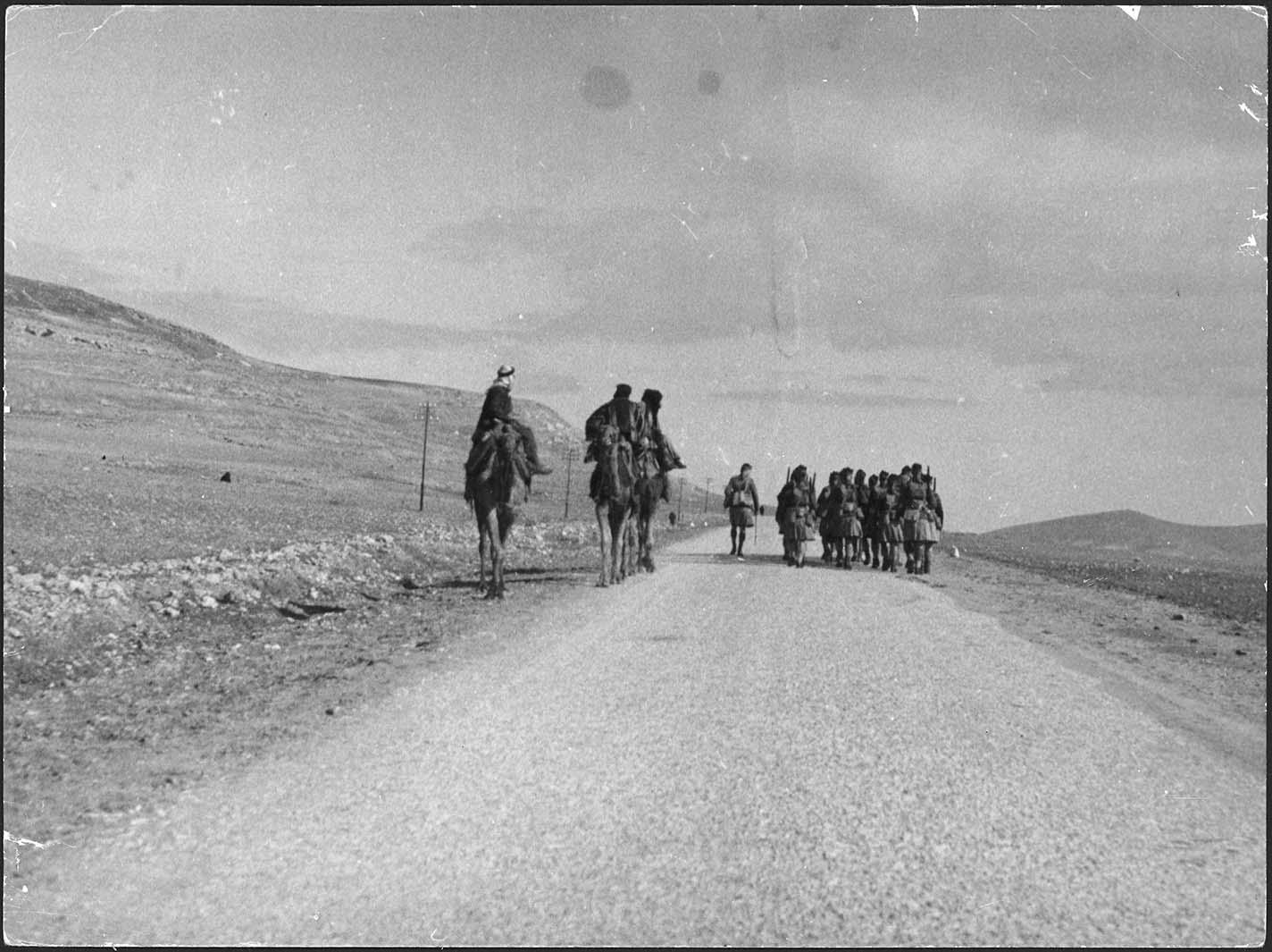 Palästine Kamelreiter 1933/34